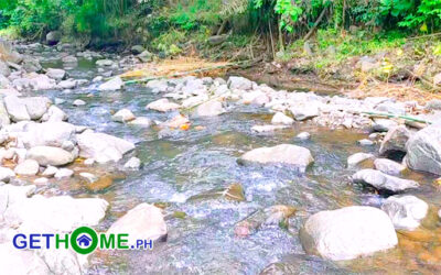 2.5 hectares Farm Lot For Sale in TORIL Davao City